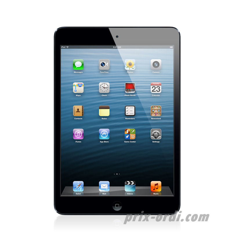 prix APPLE  IPAD Mini 64 Go